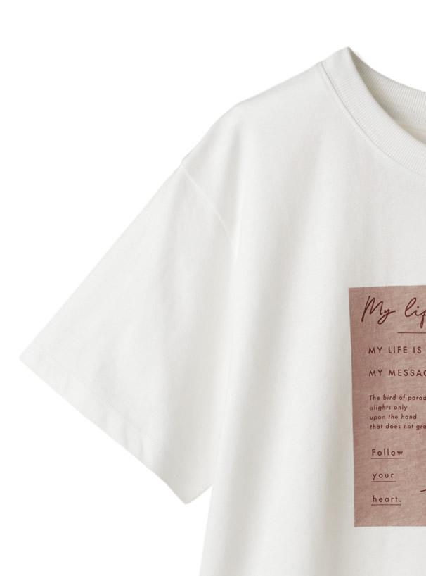 ボックスプリントテディベアTシャツ